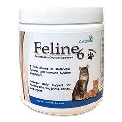 Feline6 Colostrum Supplement